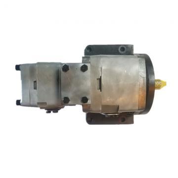 NACHI IPH-56B-50-125-11 IPH Double Pompe à engrenages