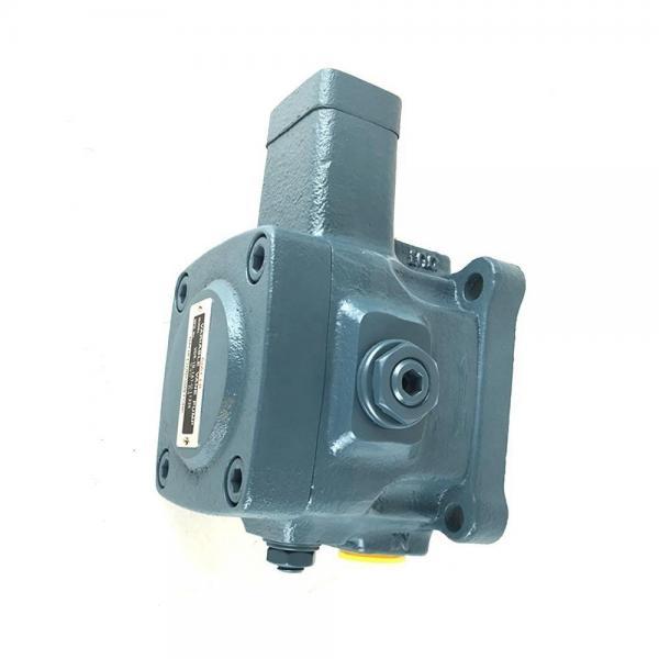 NACHI VDR-11A-1A2-1A3-13 VDR pompe à palettes #2 image