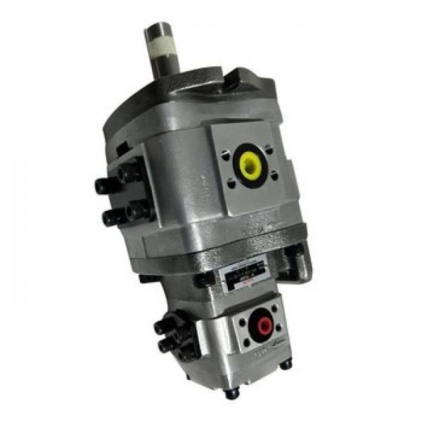 NACHI IPH-24B IPH Double Pompe à engrenages #2 image