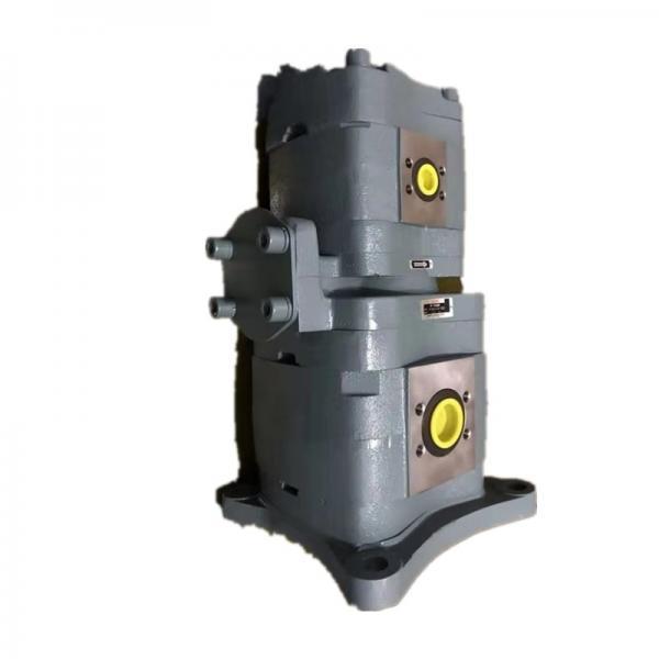 NACHI IPH-24B IPH Double Pompe à engrenages #3 image