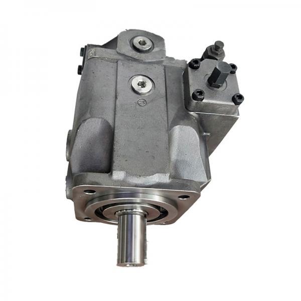 REXROTH A10VSO45DFE1/31R-PPA12N00 A10VSO45 pompe à piston #1 image